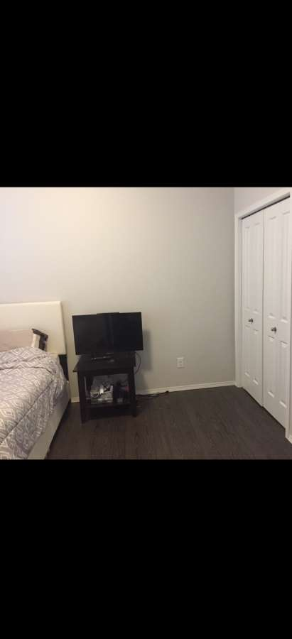 2人房 (一个双人床) room